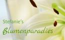 Stefanie's Blumenparadies