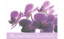 Blumenhaus Buchholz
