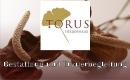 TORUS Bestattungen